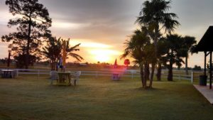 Sunlight Ranch & Polo Club
