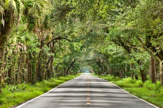 Take the scenic route. Image