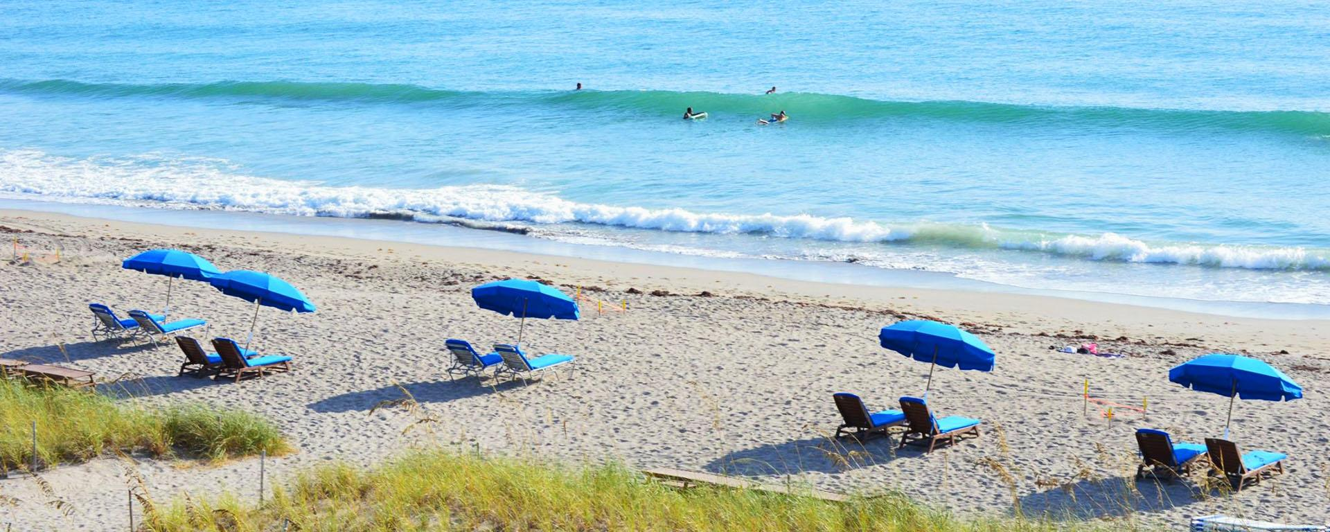Jensen Sea Turtle Beach/Sand Dune Cafe Image
