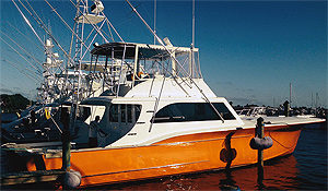 Sailfish Marina of Stuart