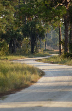 DuPuis Wildlife Management Area Image
