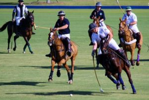 Port Mayaca Polo Club