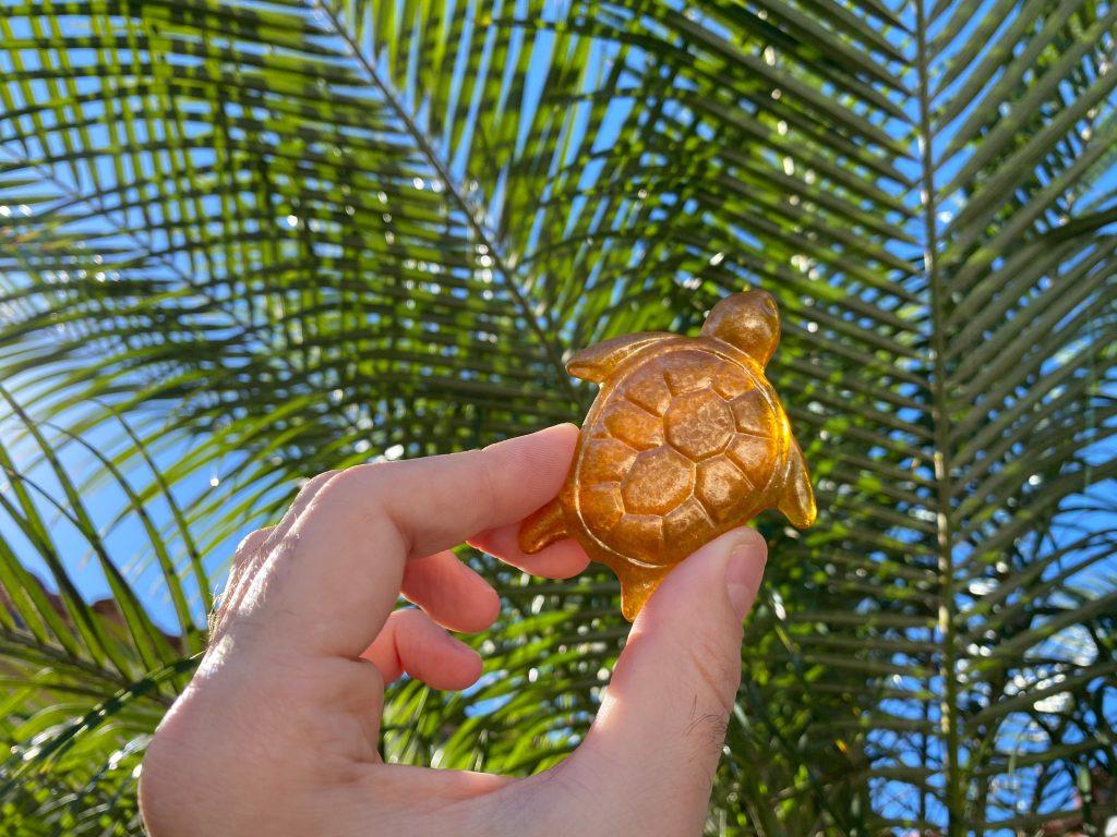 Gold Sea Turtle Martin County Scavenger Hunt